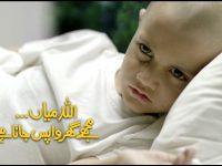 اللہ میاں مجھے گھر واپس جانا ہے: رانا ساجد سہیل