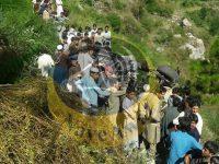 بریکنگ نیوز ۔۔ لوئر دیر میں گاڑی کھائی میں گرنے سے ایک ہی خاندان کے چار افراد جا بحق