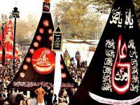 بہاولپور میں چہلم کے موقع پر جلوس ، مجالس اور سیکیورٹی انتظامات کی تفصیل